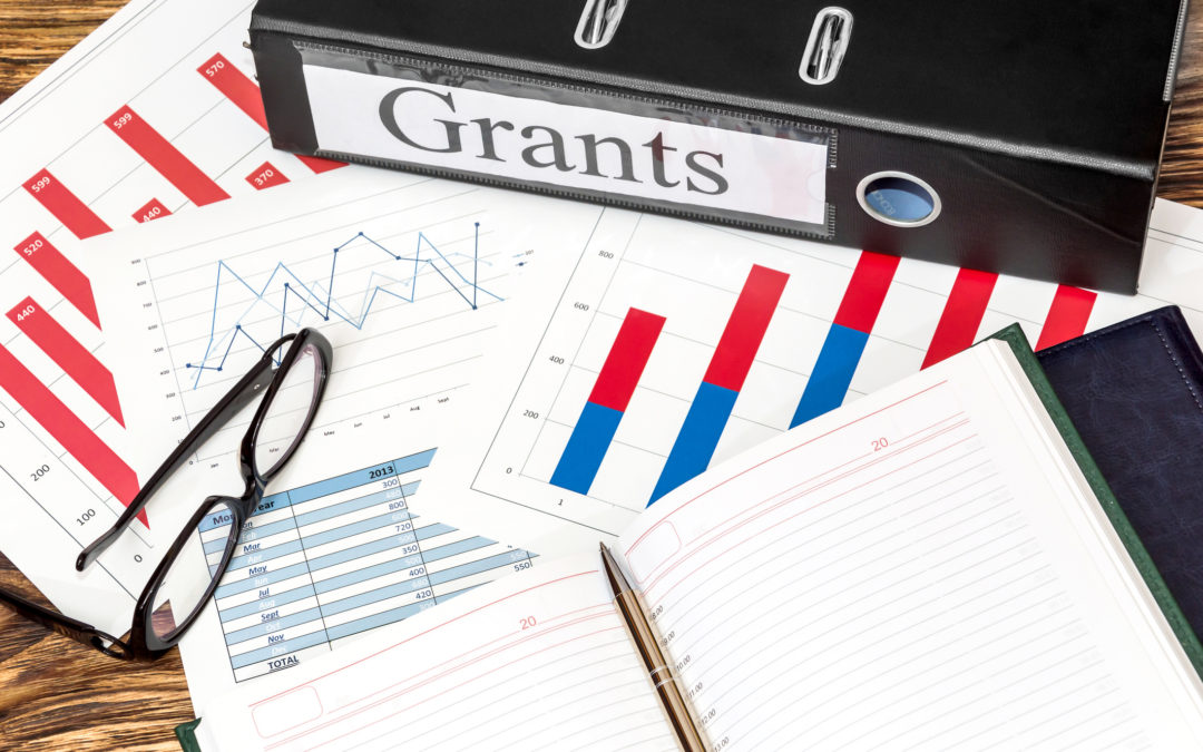 Government Grants: Should Your Business Apply?